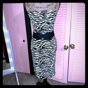 Zebra Striped Sweetheart Pinup Dress